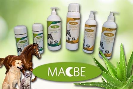 Aloe Vera para tus mascotas